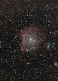 NGC2174 aka Monkey Head Nebula royalty free stock photo