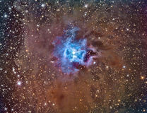 NGC 7023 Iris Nebula. Imaged with a telescope and a scientific CCD camera stock photos