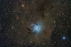 NGC7023 - The Iris Nebulae and his molecular clouds Royalty Free Stock Photos