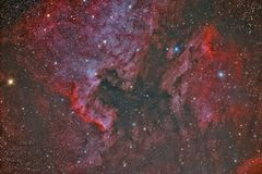 NGC 7000 North America Nebula and IC 5070 Pelican Nebula. Imaged with a telescope and a scientific CCD camera royalty free illustration