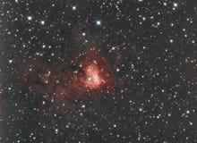 NGC1491 in Perseus Royalty-vrije Stock Afbeelding