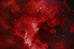 NGC7000 Mgławica Północna Ameryka Obrazy Royalty Free