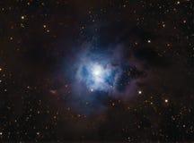 NGC7023 Iris Nebula. NGC7023 Iris astronomy telescope nebula star royalty free stock photography