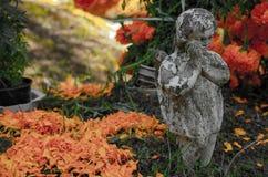?ngel och blommor arkivbild