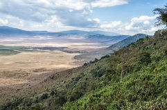 Ngorogoro stock photography