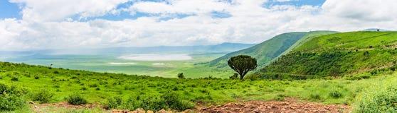 Ngorongora火山口风景 免版税库存照片