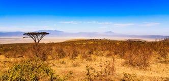 ngorongoro Τανζανία κρατήρων Στοκ φωτογραφία με δικαίωμα ελεύθερης χρήσης