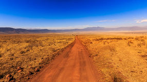 ngorongoro Танзания кратера Стоковое Изображение