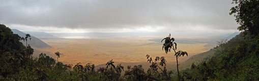Ngorongoro Caldera - Inside view. View inside the Ngorongoro Caldera from the rim above royalty free stock image