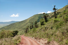 Ngorongoro Conservation Area, Tanzania Stock Photography