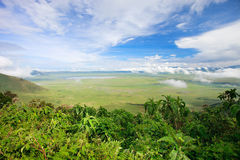 Ngorongoro crater area in Tanzania Royalty Free Stock Photos