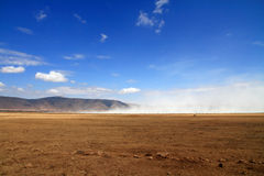 Ngorongoro Crater Landscape dust cloud. Landscape view inside the ngorongoro crater of tanzania featuring a dust cloud royalty free stock photography