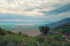 Ngorongoro crater Royalty Free Stock Photos