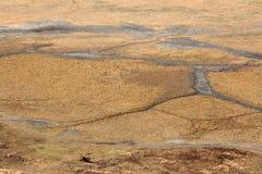 Ngorongoro Crater, Tanzania, Africa Stock Photos
