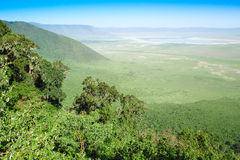 Ngorongoro crater Royalty Free Stock Photo