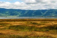 Ngorongoro dolina obrazy royalty free