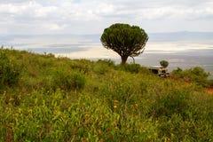 Ngorongoro konserwaci terenu przyroda i krajobraz Zdjęcie Stock
