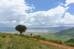 Ngorongoro krater Zdjęcia Royalty Free
