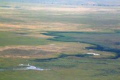 Ngorongoro krater från kanten Arkivfoto