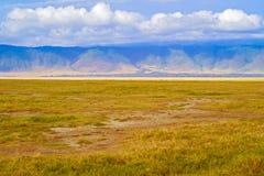 Ngorongoro Krater in Tanzania Stockbilder