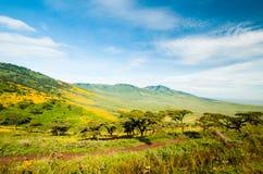 Ngorongoro Krater, Tanzania Stockbild