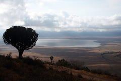 Ngorongoro lake Royalty Free Stock Image