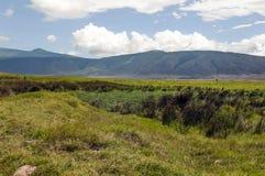 Ngorongoro valley Royalty Free Stock Photo