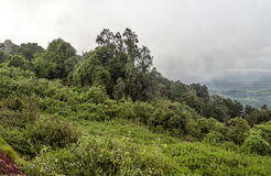 Ngorongoro valley Stock Photos