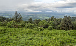 Ngorongoro valley Stock Photo