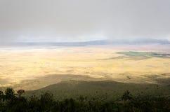 Ngorongorokrater, Tanzania Royalty-vrije Stock Fotografie