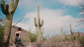 Ângulo cinemático de movimento lento baixo, mulher bonita nova do turista em caminhadas longas do vestido entre o campo grande do video estoque