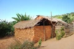 Nguruwe村庄的房子在坦桑尼亚,非洲95 免版税图库摄影