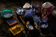 Nha Trang Fischerei Lizenzfreie Stockfotos