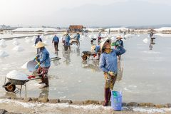 Laborers at the Hon Khoi salt fields in Nha Trang, Vietnam Royalty Free Stock Photos