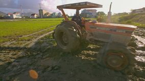 Tractor with Large Wheels Turns around on Rice Field Closeup. NHA TRANG/VIETNAM - NOVEMBER 26 2017: Tractor with large wheels and plow turns around on messy rice stock video