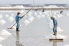 Two men organize salt into piles at the Hon Khoi salt fields in Stock Photos