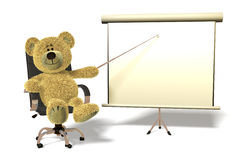 Nhi Bear office presentation. Royalty Free Stock Photo