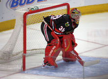 NHL Chicago Black Hawks Goalie Royalty Free Stock Photo