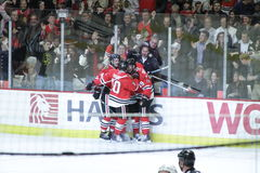 NHL Chicago Blackhawks Celebrate. Image of the Chicago Blackhawks Teammates celebrating goal against the Colorado Avalanche, Team captain Toews makes the goal royalty free stock photos