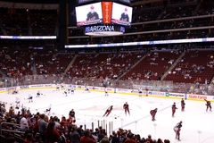 NHL Hockey - Edmonton Oilers & Phoenix Coyotes Royalty Free Stock Images
