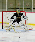 NHL's Dallas Stars Kari Lehtonen during Practice Stock Images