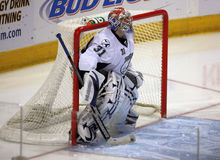 NHL Tampa Bay Lightening Goalie Royalty Free Stock Photos