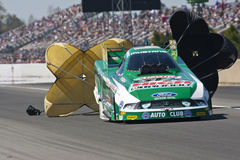 NHRA:  Mar 12 Tire Kingdom Gatornationals Stock Photography