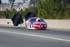 NHRA : Royaume Gatornationals de pneu du 12 mars Photos libres de droits