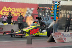 NHRA Top Fuel Dragsters Stock Photography