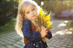 Niña adorable con las hojas de otoño en parque foto de archivo libre de regalías