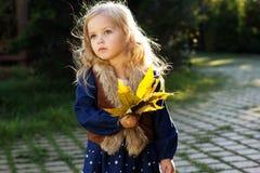 Niña adorable con las hojas de otoño en parque fotografía de archivo libre de regalías