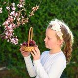 Niña adorable del retrato con la cesta de las frutas al aire libre Verano u oto?o Cosecha Shavuot imágenes de archivo libres de regalías