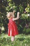 Niña adorable en vestido brillante que camina en el parque del verano Fotografía de archivo libre de regalías