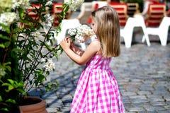 Niña adorable que juega cerca de arbusto de la flor en un parque de la ciudad Fotos de archivo libres de regalías